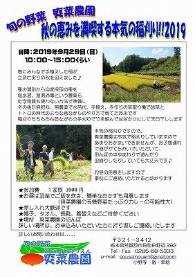 2019年秋 稲刈りのお知らせ