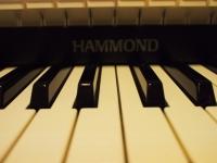 HAMMOND ORGAN_01