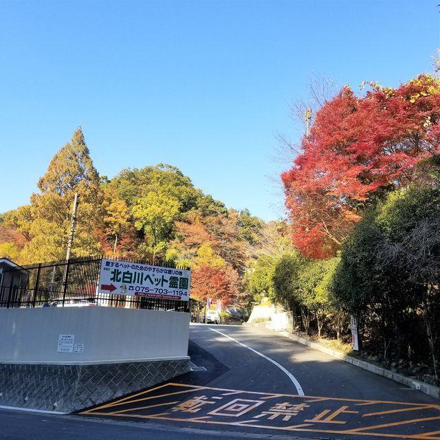 ZAC山荘1