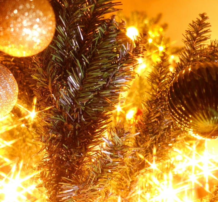 クリスマスツリーDSC02346 (1)