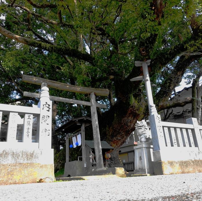DSC03221 (1)神社