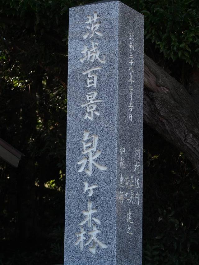 200104-36.jpg