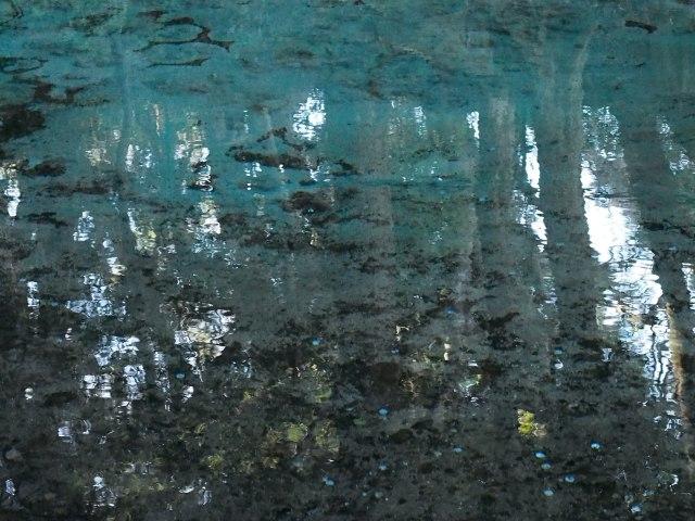 200202-11.jpg