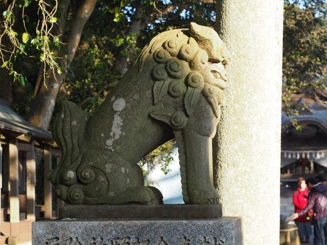 200202-131.jpg