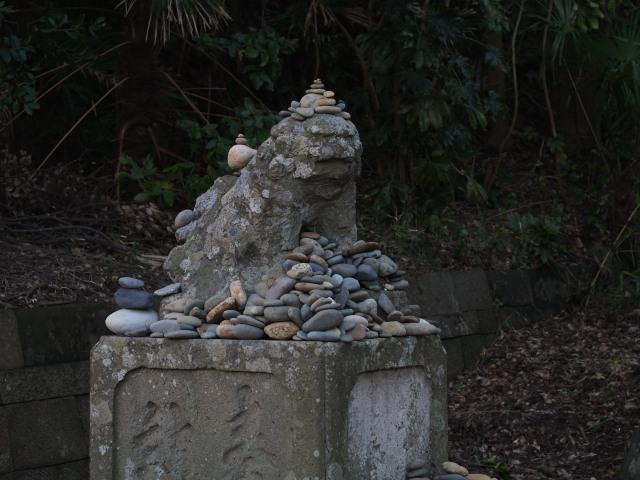 200202-163.jpg