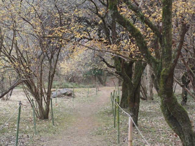 200215-96.jpg