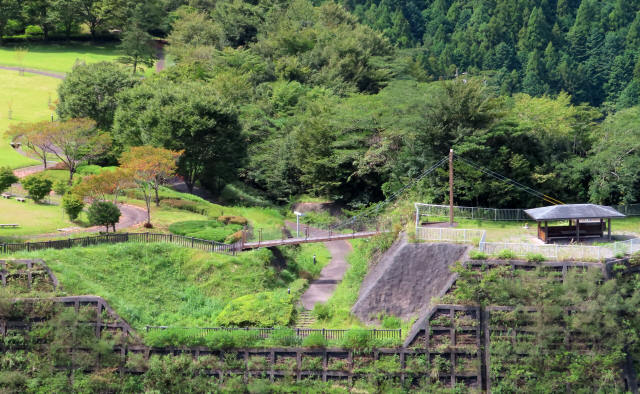 四季彩公園の吊橋8