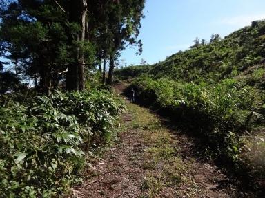峠への旧道