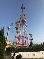 電波塔のジャングル191116