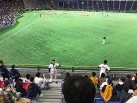 東京ドーム外野191116