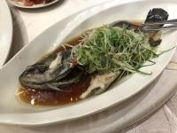 蒸し魚191123