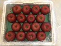 日本産リンゴ191223