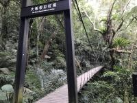 大板根彩虹橋200101
