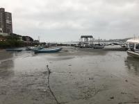 干潟に漁船200112