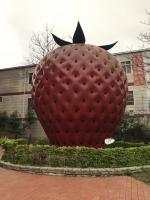 巨大イチゴ200128
