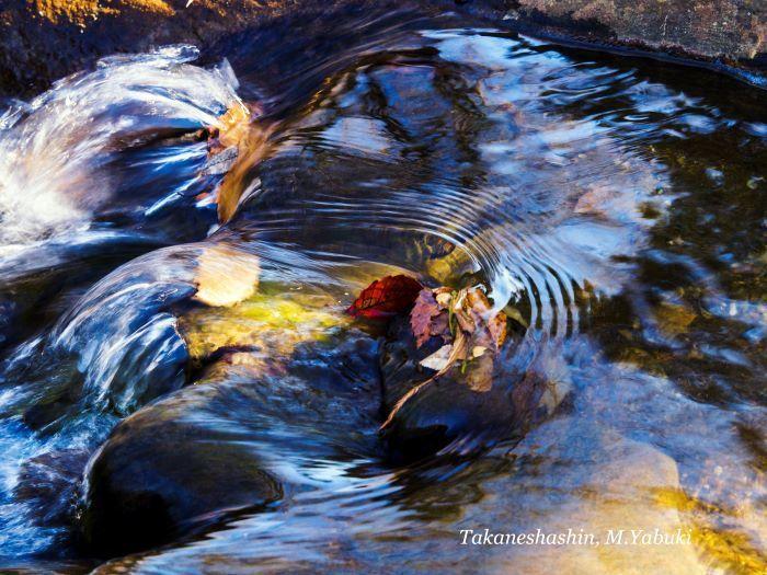 水の彩41