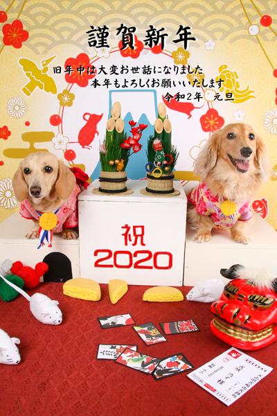 20200101-01.jpg