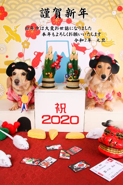 20200101-02.jpg