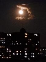 月をくわえる龍IMG_3525