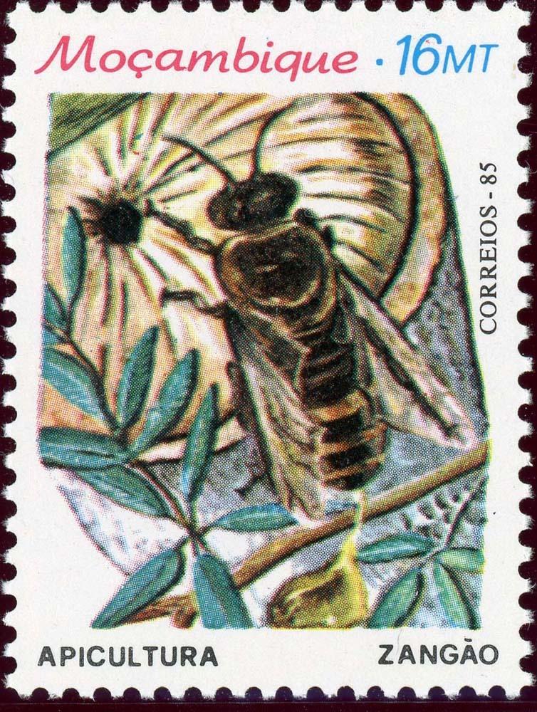 Mozambique:1985-3