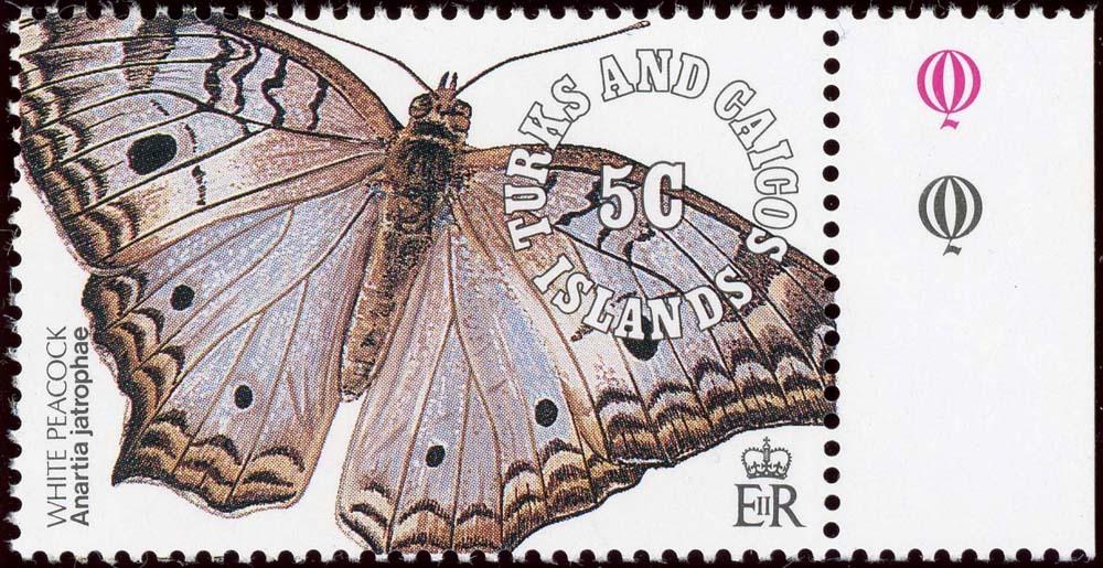 Turks-Caicos:1991-1