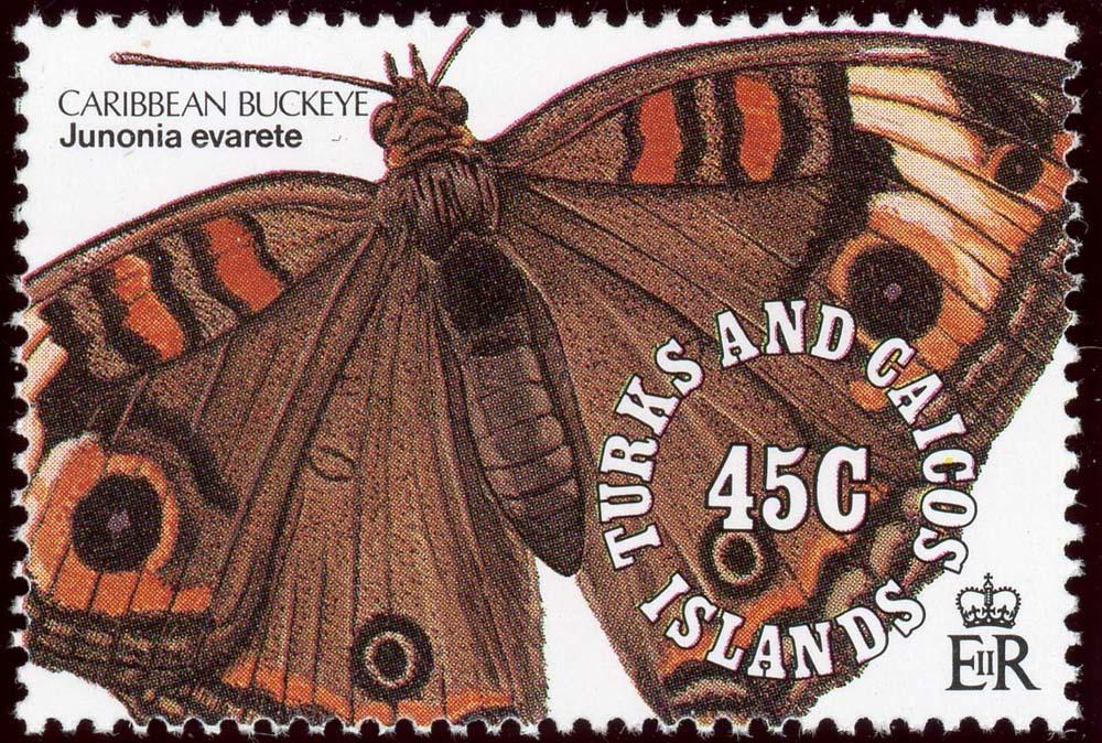 Turks-Caicos:1991-7