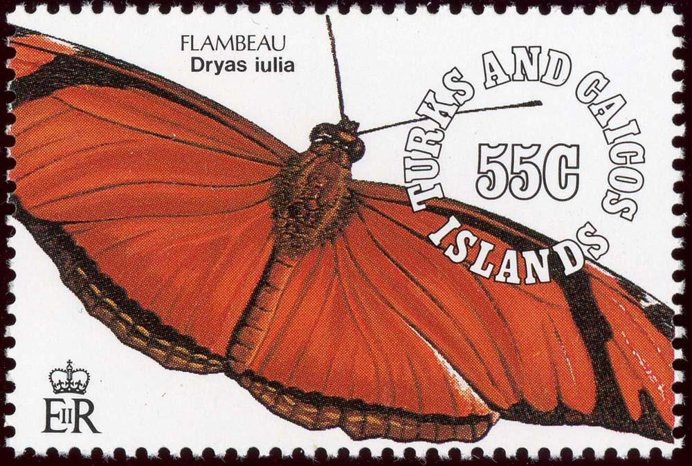 Turks-Caicos:1991-8