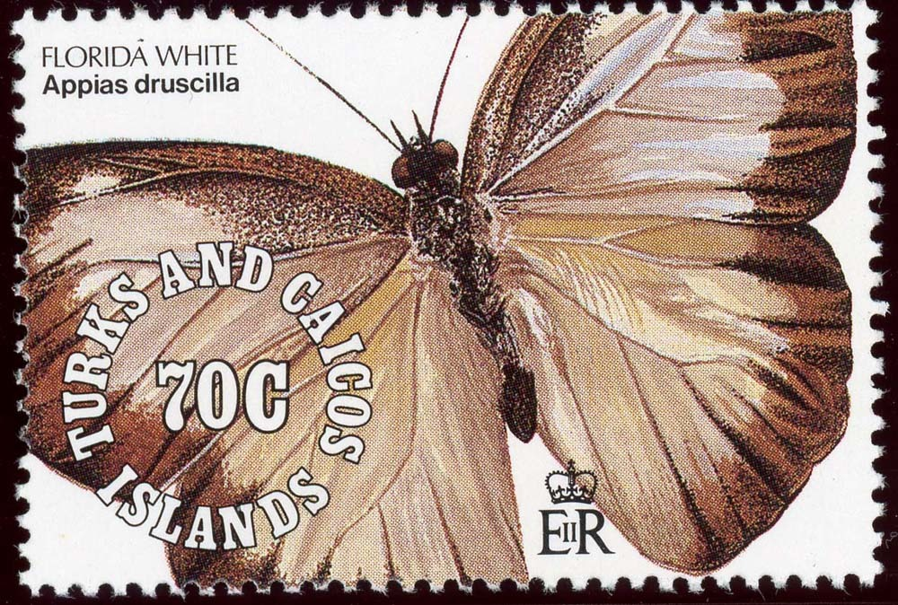 Turks-Caicos:1991-9