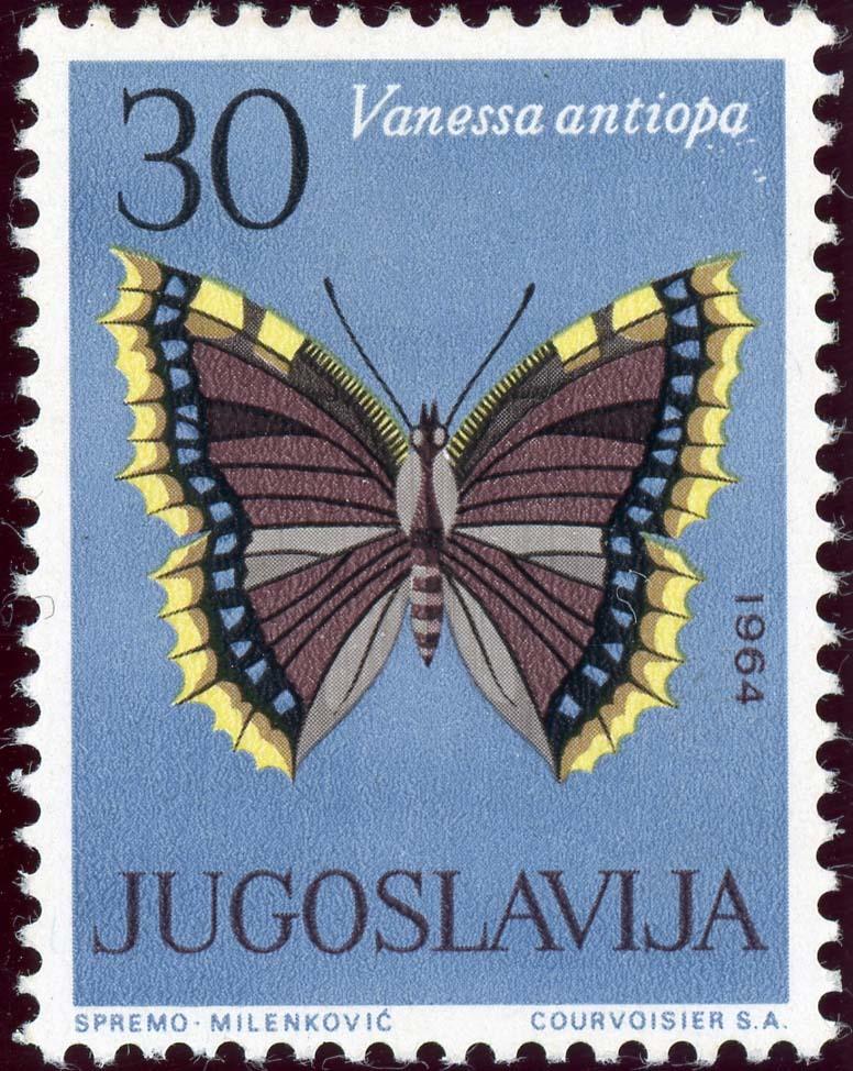 Yugoslavia:1954-2