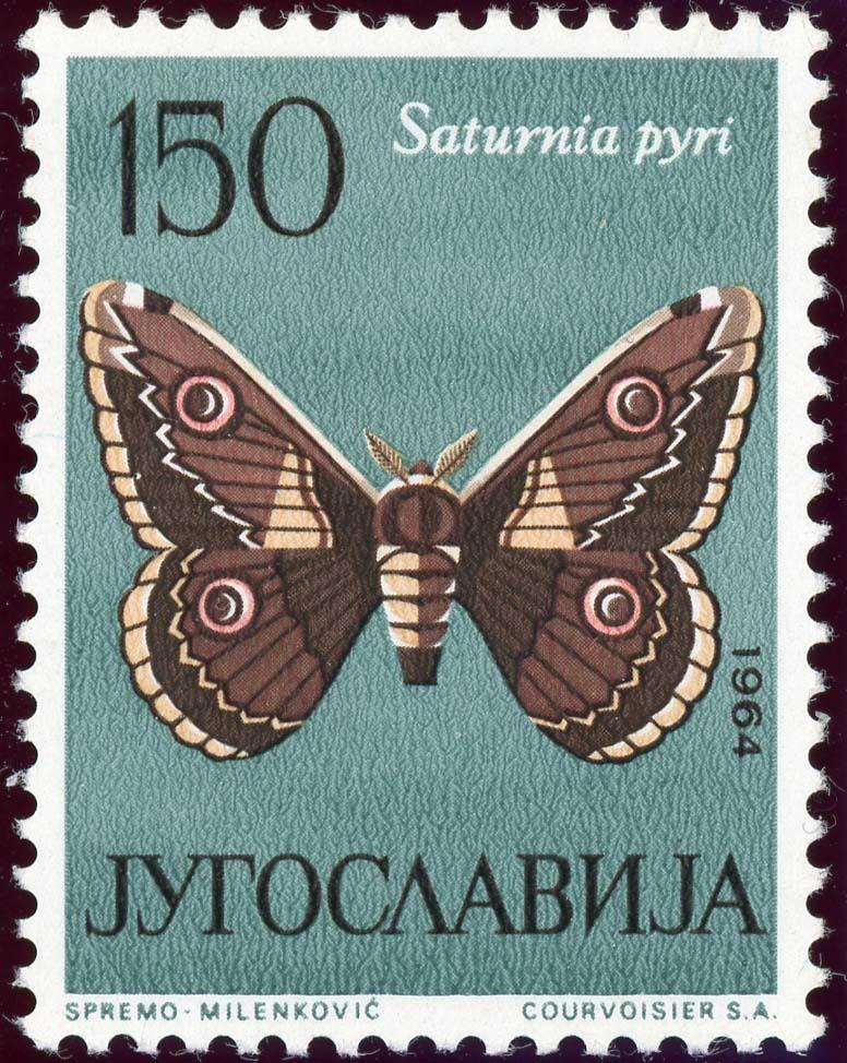 Yugoslavia:1954-5