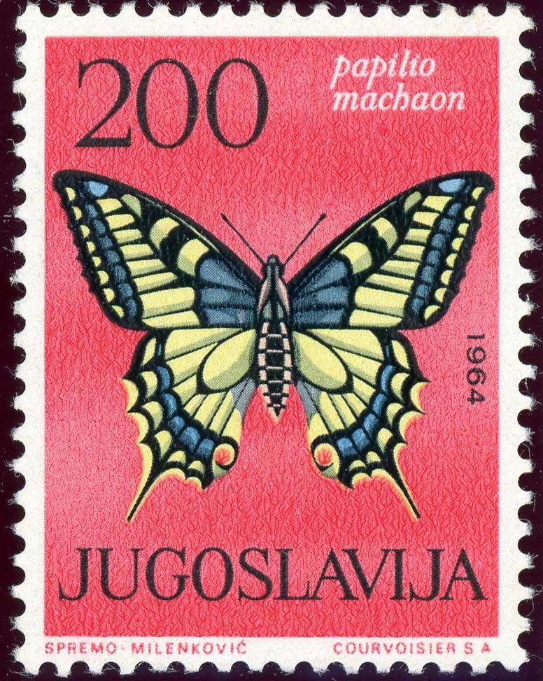 Yugoslavia:1954-6