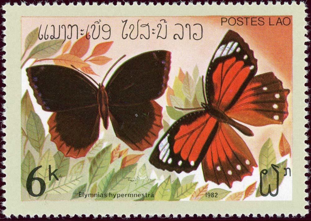 Laos:1982-6