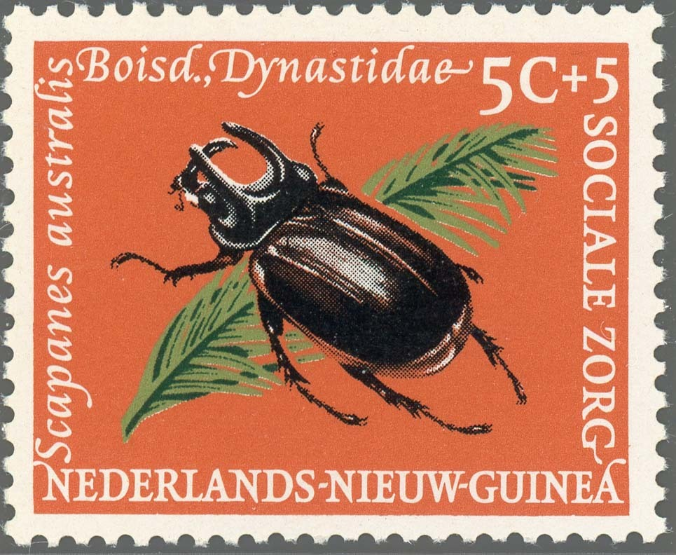 Ned-NewGuinea:1961-1