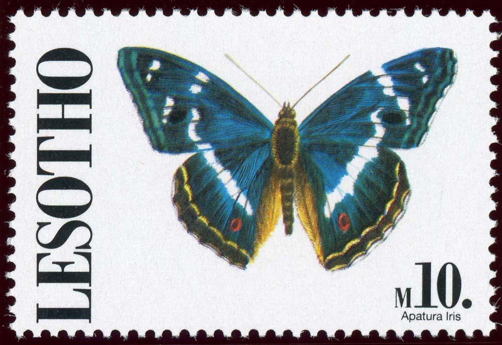 Lesotho:1991-15