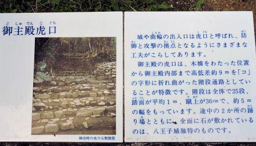 191004hachi36.jpg