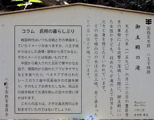 191004hachi50.jpg