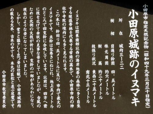 191023odashiro29.jpg