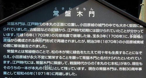 191023odashiro40.jpg