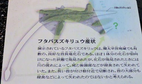 200206kagaku21.jpg