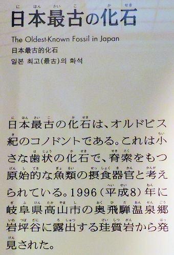200206kagaku25.jpg