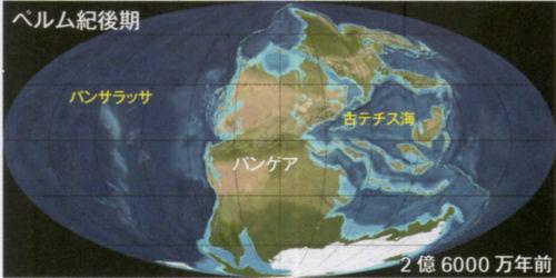 200210uenoka03.jpg