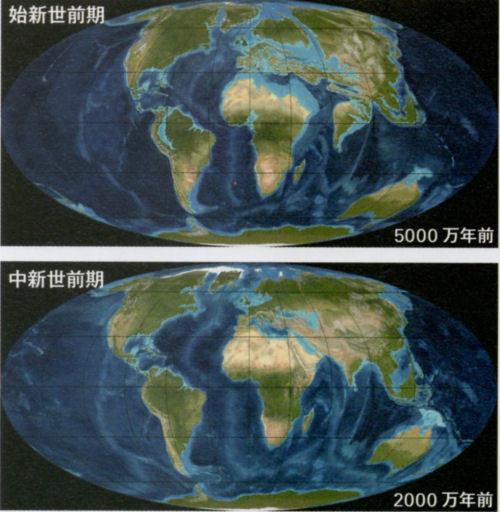 200210uenoka05.jpg