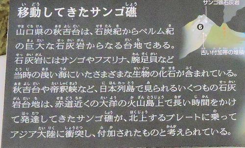 200210uenoka06.jpg
