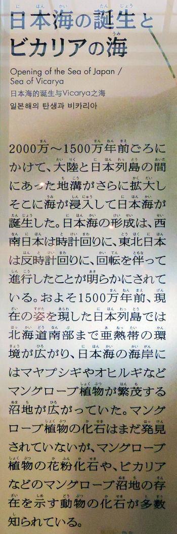 200210uenoka35.jpg