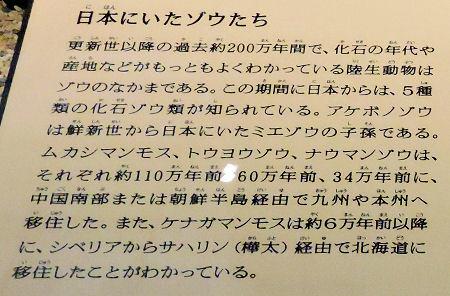 200210uenoka43.jpg