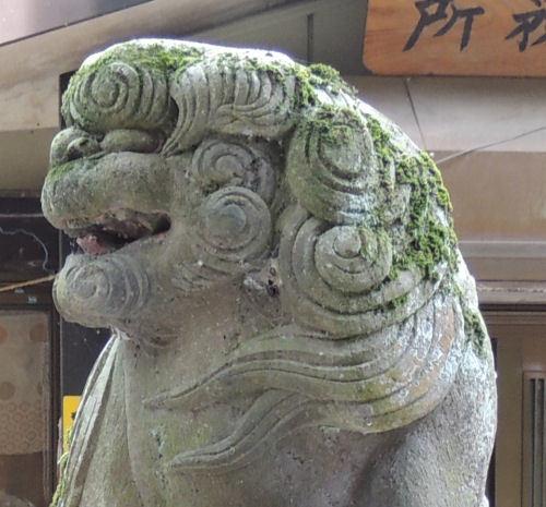 200302anazawa10.jpg
