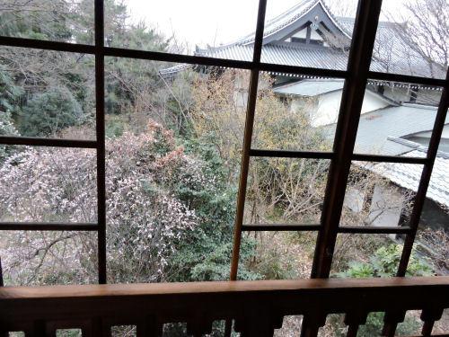 200310karasu24.jpg