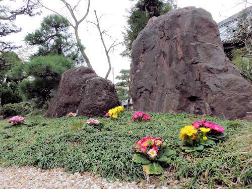 200310karasu37.jpg