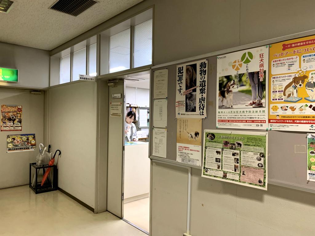 20191113動物管理センター01