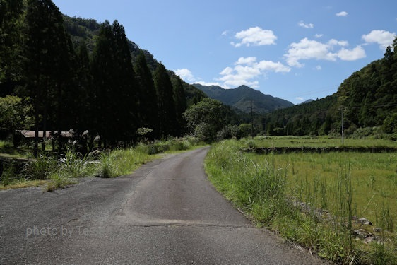 J94A0862県道36